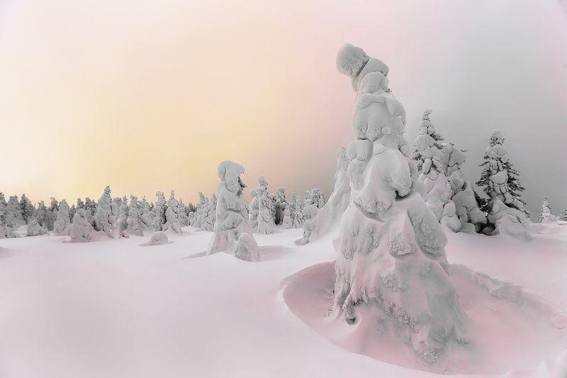 Южный Урал, туризм, зима, метель, деревья, снег, путешествия, пейзаж Рассвет на вершинеphoto preview