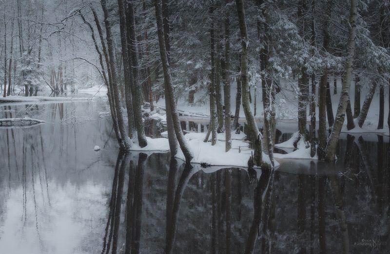река, юля-йоки, юляйоки, ильичёво, ленинградская область, отражения, зима, снегопад, деревья, монохром Юля-йокиphoto preview