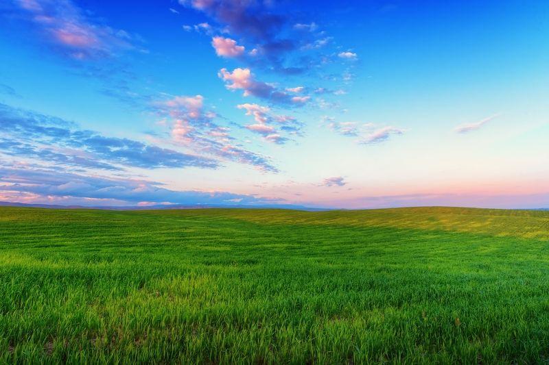 Весенние поля Киргизииphoto preview
