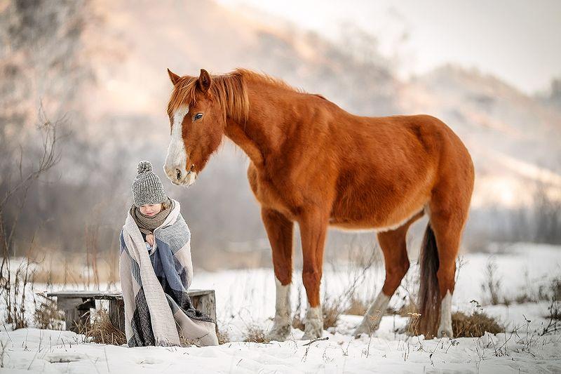 лошади, семья, природа, дети, кони, алтай, горы ****photo preview