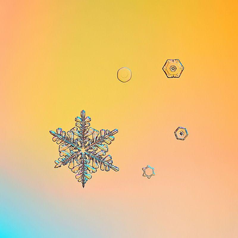 снежинка, снежинки, макро, зима, кристалл, природа Разноцветная зимаphoto preview