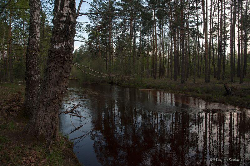р.бобер,весна,владимир карчевский Утро на лесной речушкеphoto preview
