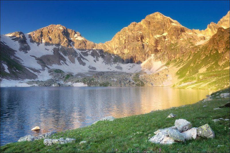 Кавказское золотоphoto preview