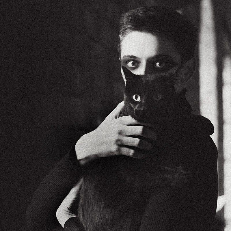 кот, черный Два котаphoto preview