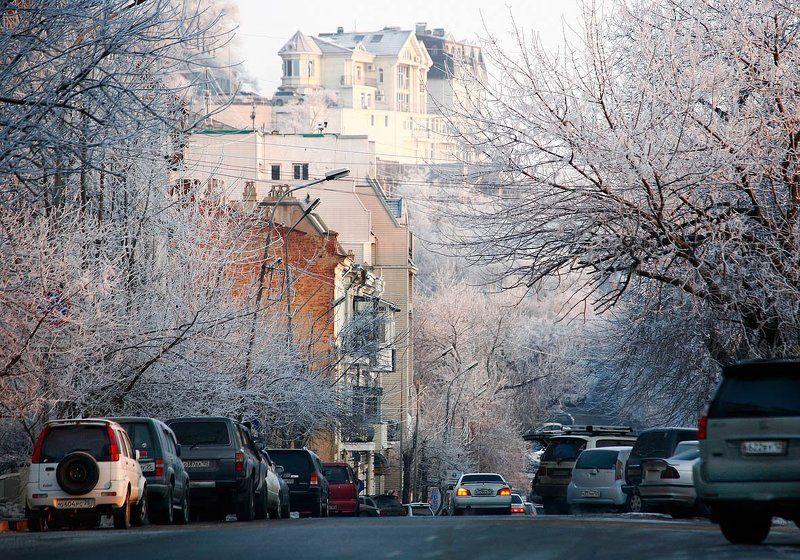 зима,иней,город, утроphoto preview