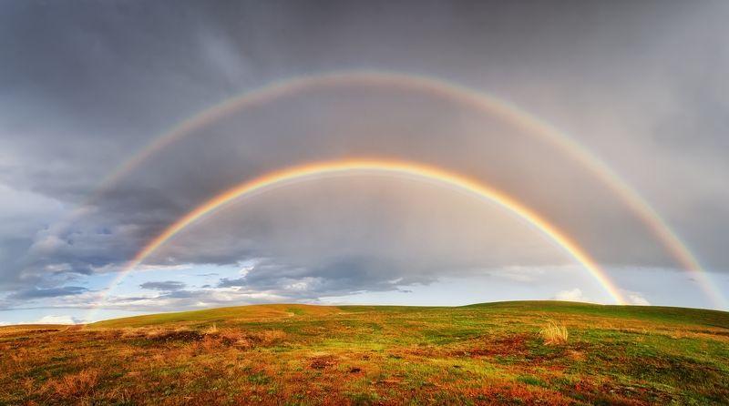в полях Киргизии после дождяphoto preview