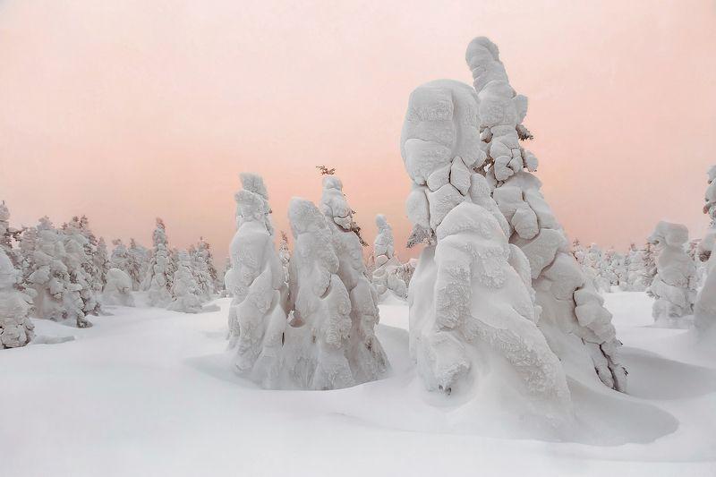 Таганай, Южный Урал, Златоуст, снег, метель, восход Театр снежных фигурphoto preview