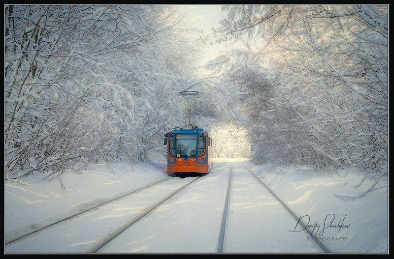 москва, сокольники, трамвай, снегопад, снег, лес, парк Московский трамвай после сильного снегопада.photo preview
