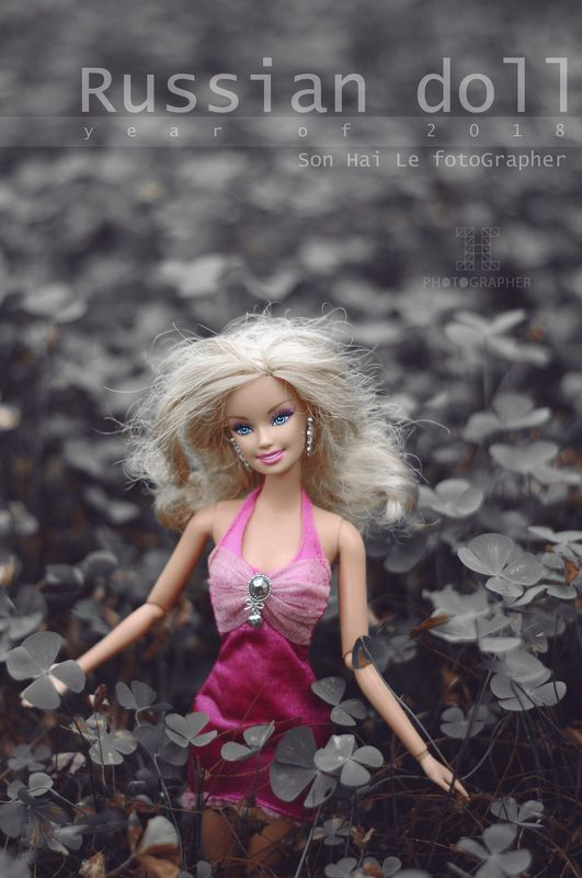Russian Dollphoto preview