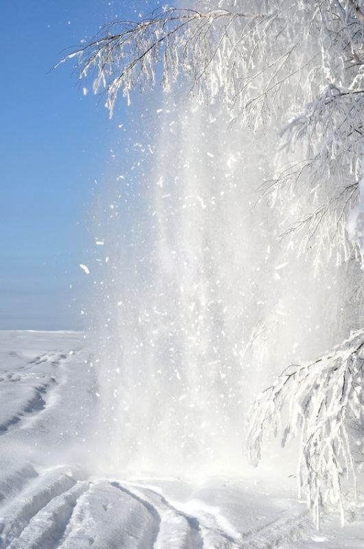 зима, снег, деревья, опушка, поле Снежный взрывphoto preview