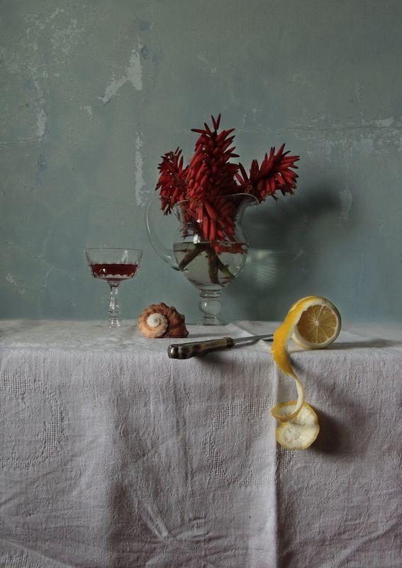 lemon, flowers, glass, knife, shell, wine, texture Wine, Shell and Lemonphoto preview