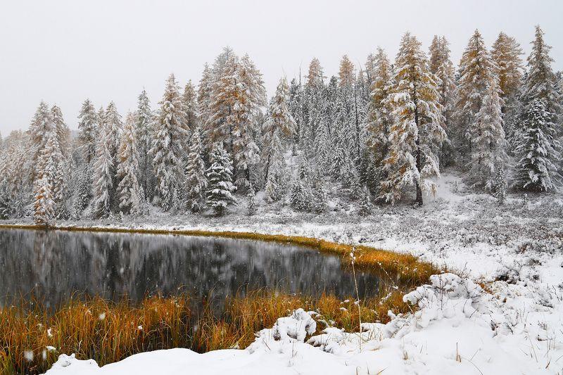 Горный Алтай, озеро, Киделю, осень, зима, белый снег Серебряно-Золотой  Алтай.photo preview