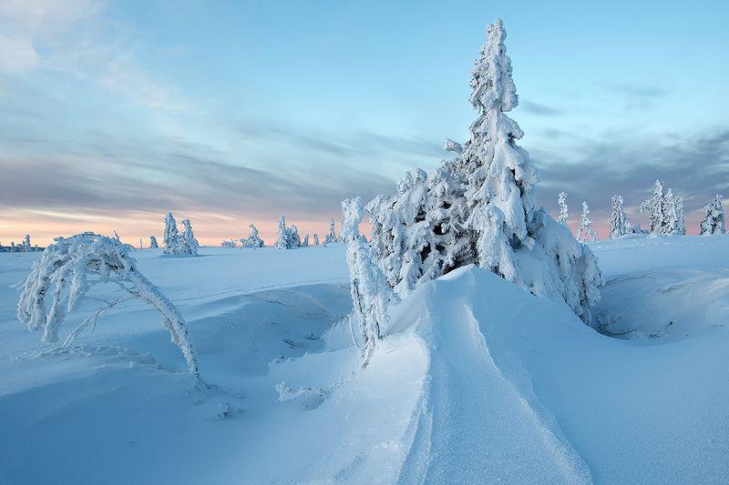 poland,karkonosze. Karkonosze zimą.photo preview