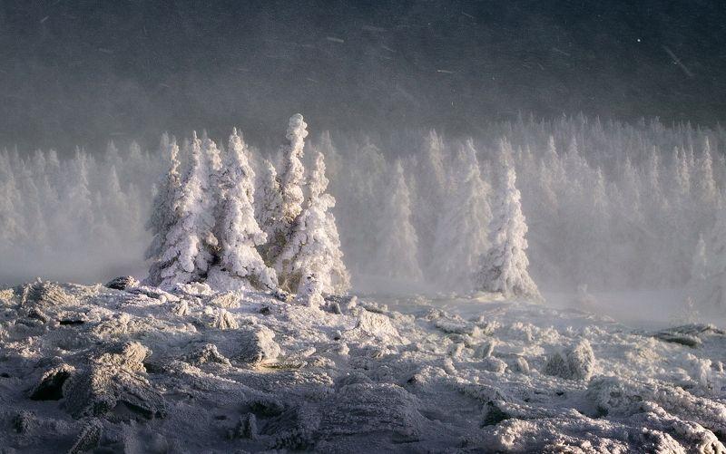 Уреньга, Южный Урал Воины светаphoto preview