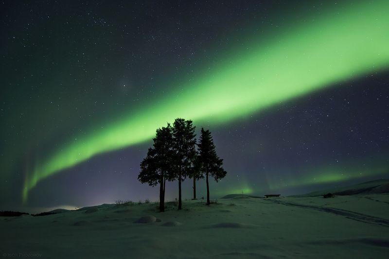 кольский полуостров, мурманская область, полярное сияние, северное сияние, ночная фотография  5 сестёрphoto preview