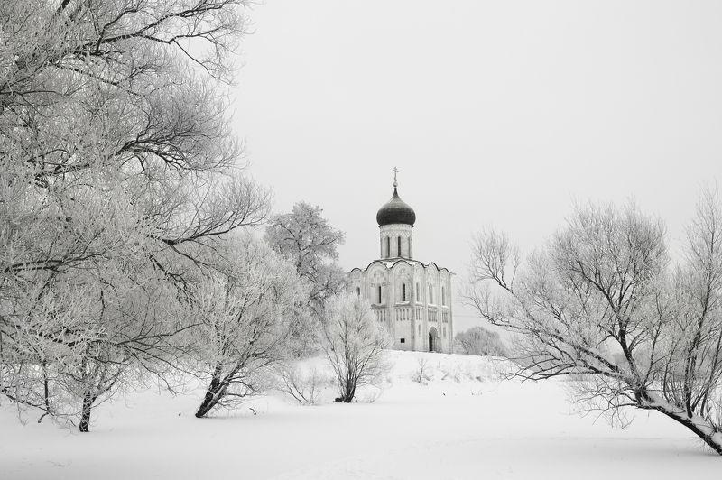 покрова на нерли, церковь, собор,владимирская область, боголюбово, зима, Белое настроение. Покрова на Нерли.photo preview