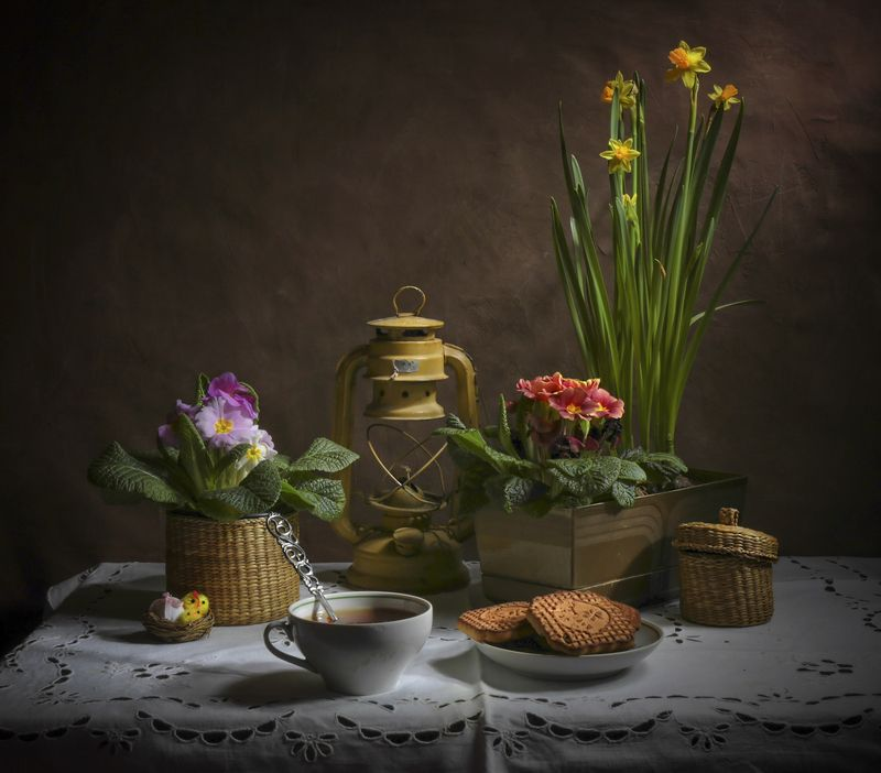 весна,нарцис,примула,натюрморт, Весенний с примулой и нарцисами.photo preview