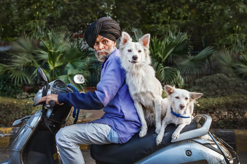 индия, дели, портрет, жанр, путешествие, india, portrait, man, travel, new delhi Трое из ларцаphoto preview