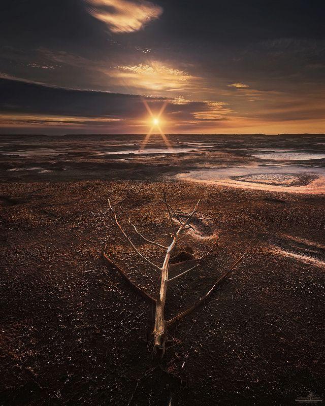 баскунчак Соленые степи горячей землиphoto preview