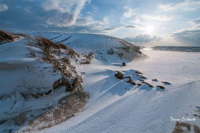 winter,snow,sea,coast,dunes Blizzard trailphoto preview