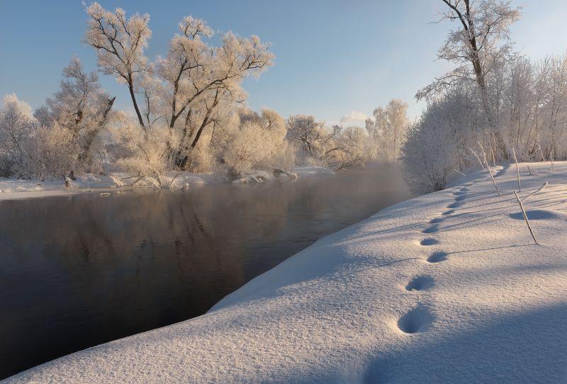 Блестя на солнце, снег лежитphoto preview