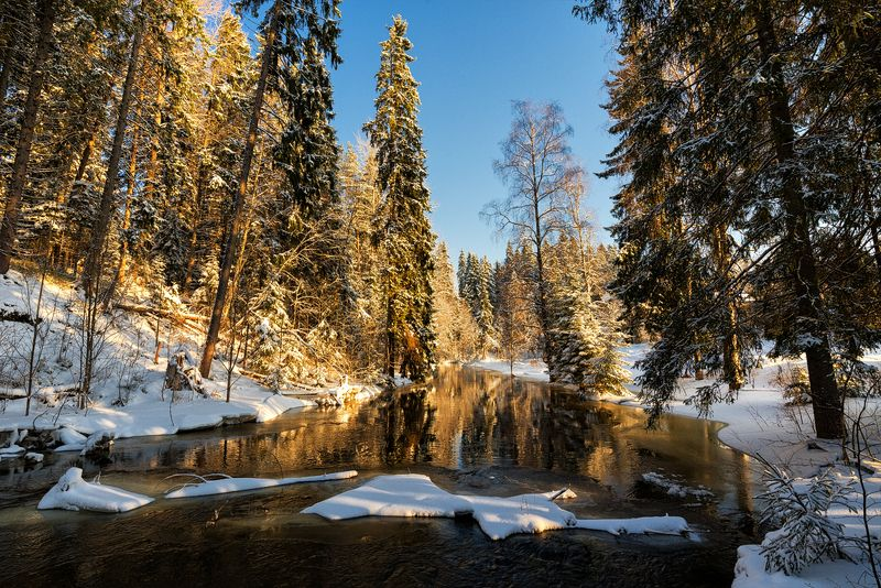 февраль,зима,день,река,берега,сосны,снег,свет,пейзаж,отражения Февральский солнечный денек...photo preview