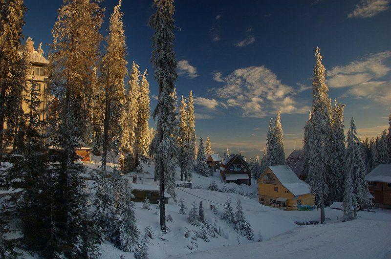 горы, карпаты, зима, утро, снег Драгобрат перед пробуждениемphoto preview