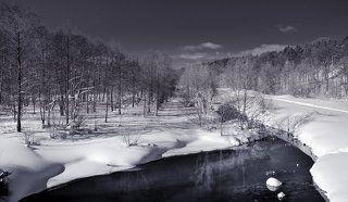 Последний взгляд на зиму