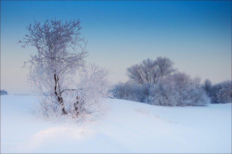 Холодное обаяние мартовского утраphoto preview