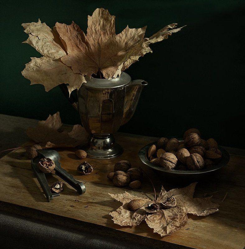 Грецкие орехи и желтые листьяphoto preview
