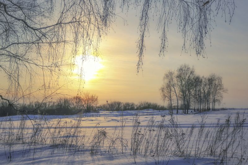 зима,пейзаж.закат, Вот такая спящая веснаphoto preview