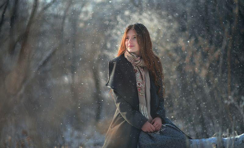 портрет Зимняя сказкаphoto preview
