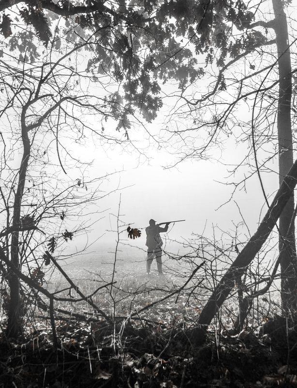 сербия, утро, черно-белый, без цвета, охотник, профиль, оружие, оружие, охота на фазанов, туман, зима, дуб, лес, тень, силуэт, serbia, morning, black and white, no color, hunter, profile, gun, weapon, pheasant hunting, misty, winter, oak, forest, shadow,  Morningphoto preview