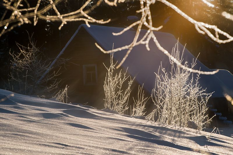 Утреннее мартовское солнцеphoto preview