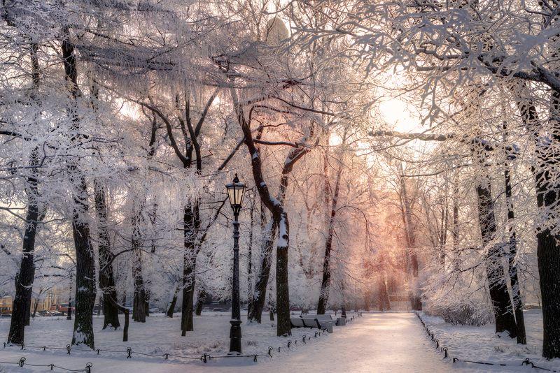 Ажурная зимаphoto preview