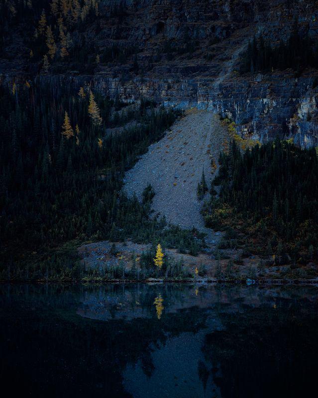 канада, альберта, национальный парк банф, антенна озера, райская долина, лиственница, дерево, осень, лес, природа, желтый, отражение, низкий свет, canada, alberta, banff national park, lake annette, paradise valley, larch, tree, autumn, forest, nature, ye Avangardaphoto preview
