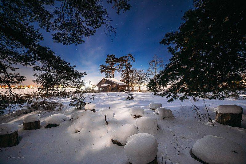 зима, свет, снег, дом, небо, звезды, лес Под Лунойphoto preview