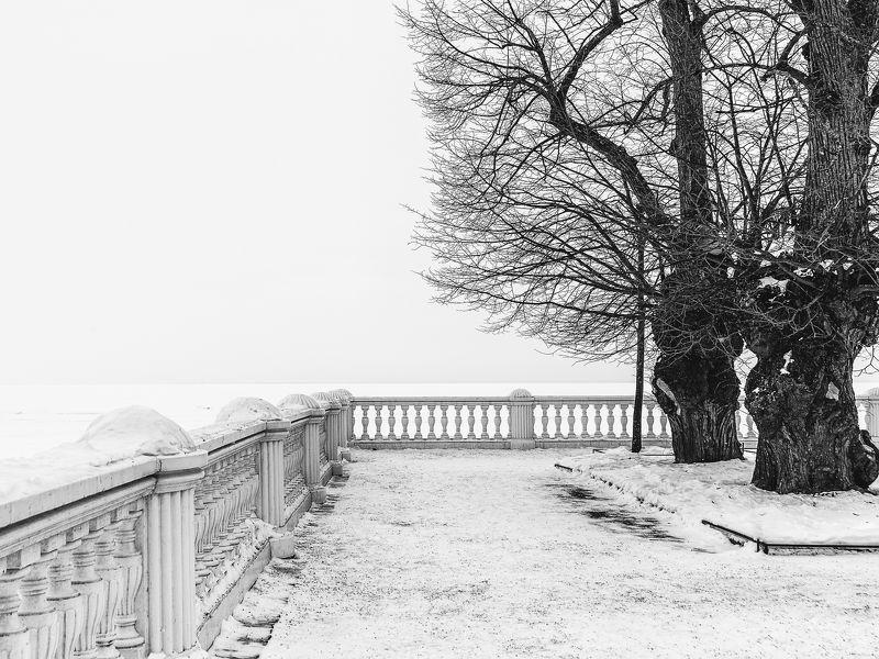 парк залив зима весна снег март прогулка никон Черное и белоеphoto preview