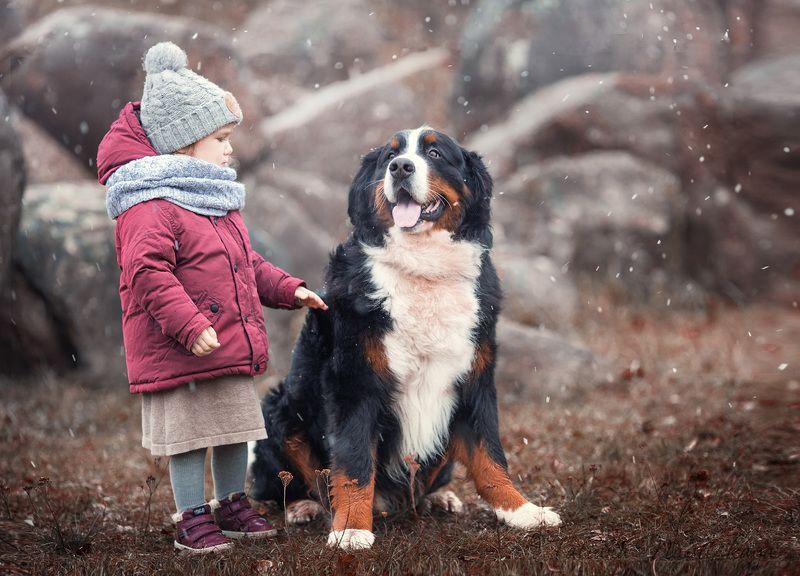 собака, ребенок, друг, осень, снег, коричневый, друзья, разговор Лучший другphoto preview