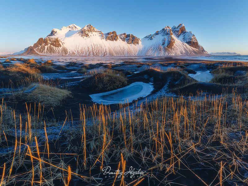 Исландия, пейзаж, утро, вестрахорн, природа, болота, горы, лед, морозное утро, landscape, nature, Iceland, vestrahorn,panoramic, ilyshevphoto Исландские мотивыphoto preview