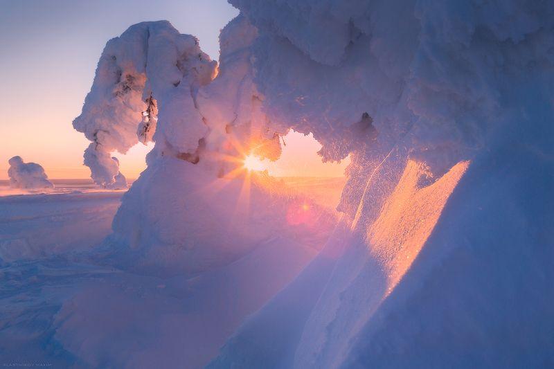 Финляндия, Лапландия, снег, ветер, холод, лес, солнце, путешествия, рассвет, закат, луч, солнце, мороз, зима, новый, год, Lapland, Finland, sky, cold, snow, wind, travel, explore, outdoore, trees, forest, light, sun. sunset, sunrise Морозное утроphoto preview