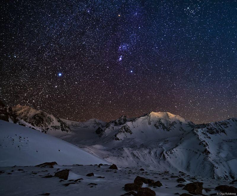 горы, ночь, ночное небо, орион, созвездие ориона, заилийский алатау, тянь-шань, альпинград Поход за созвездием Орионаphoto preview