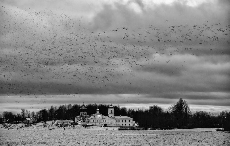 псков, россия, зима ***photo preview