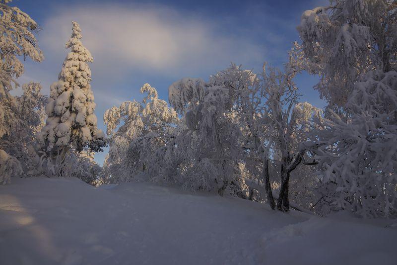 Зимний этюд...photo preview