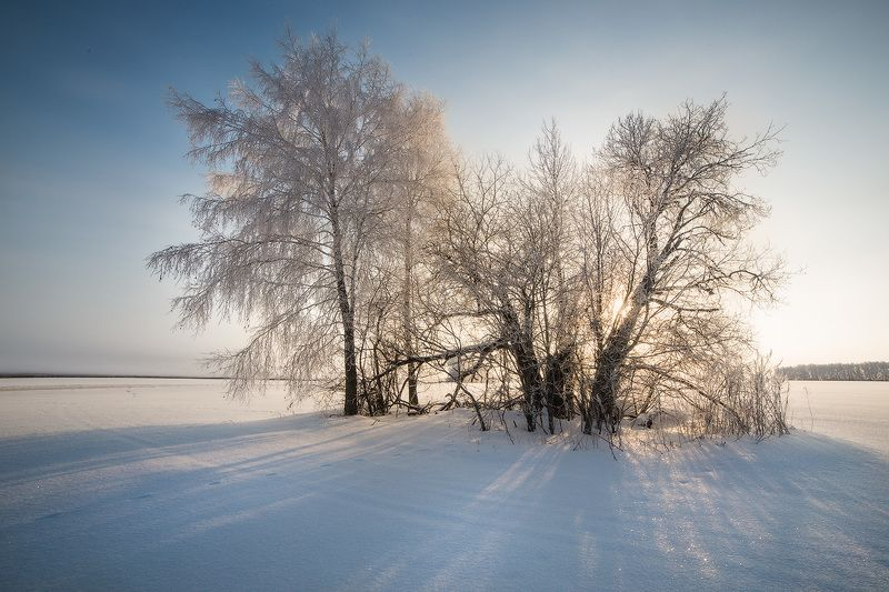 winter, frost, water, ice,snow, мороз, зима, утро, пейзаж. лед, иней Иней в Полесьеphoto preview