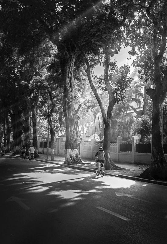 hanoi winter bw lanscape rays Hanoi Winterphoto preview