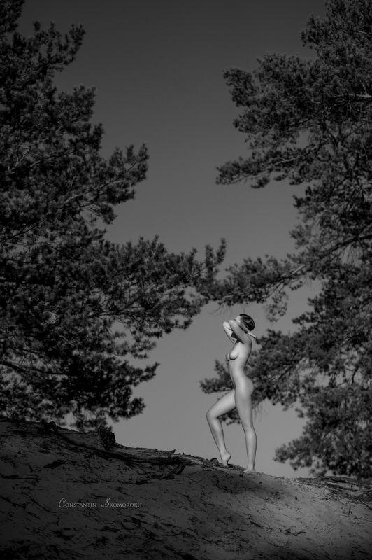 konstantin skomorokh, константин скоморох, kiev, киев, severodonetsk, северодонецк, ню, art nude, fine art, Antique 3photo preview