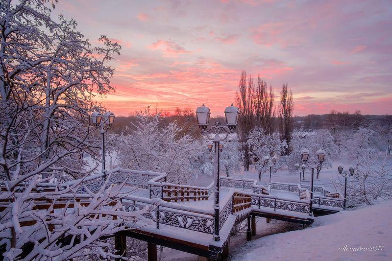 пейзаж,природа,зима,иней,березы,снег,nature,landscape,snow,frosty,cold,socold Зимняя лестницаphoto preview