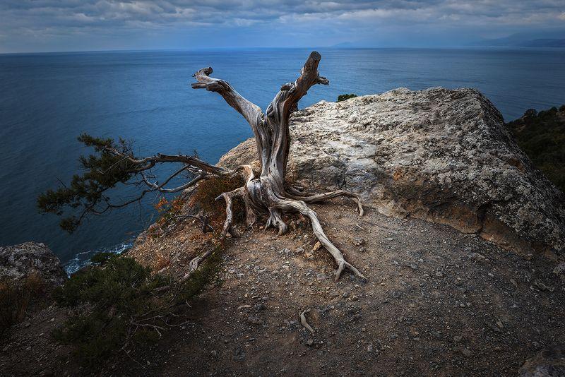 крым караул-оба черное море Ожиданиеphoto preview