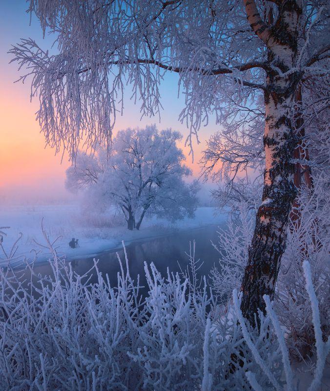 истра, рассвет, туман, мороз, зима, дерево, река Зимняя утренняяphoto preview